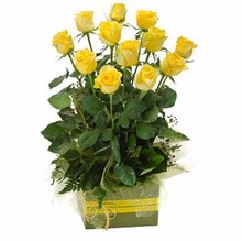Box Arrangement of 12 Long Stemmed Yellow Roses