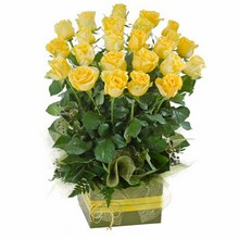 Box Arrangement of 24 Long Stemmed Yellow Roses