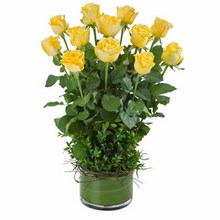 Arrangement of 12 Long Stemmed Yellow Roses in a Low Glass Vase