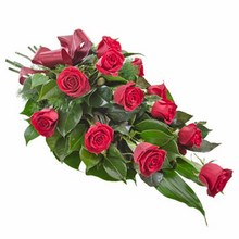 Sheaf of 12 Long Stemmed Red Roses
