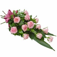 Sheaf of 12 Long Stemmed Pink Roses