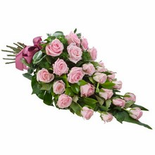 Sheaf of 24 Long Stemmed Pink Roses