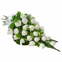 Sheaf of 24 Long Stemmed White Roses