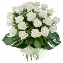Bouquet of 24 Long Stemmed White Roses