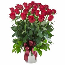 Arrangement of 24 Red Roses in a Ceramic Pot