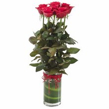 Vase with 6 Red Roses