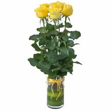 Vase with 6 Yellow Roses