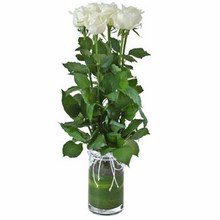 Vase with 6 White Roses