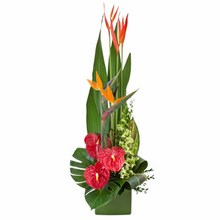 Large Tropical Arrangement in a Ceramic Container
