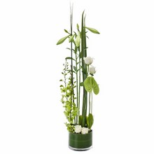 Modern Arrangement in a Low Glass Vase