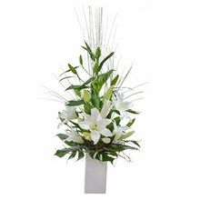 Elegant Arrangement of Oriental Lilies