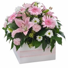 a lovely mixed pastel arrangement in pinks and white tones presented in a white gift box