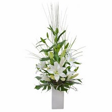 Elegant Arrangement of Oriental Liles Suitable for Home